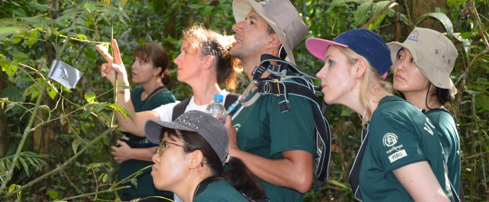 Projects Abroad volunteers bird watching on their Spring Break Conservation Project in Peru
